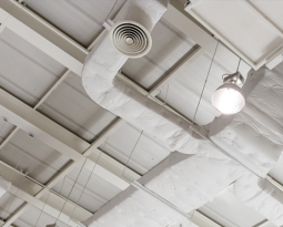 4 Ways Your Ceiling System can Improve Your Productivity